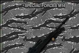 Special_Forces_M14