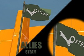 EA_and_Steam_flags