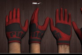 2009_Edition_PUMA_Gloves