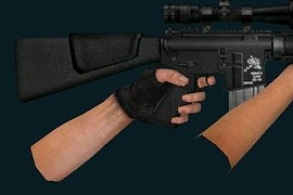 SR-25_+_Eviltiki100_s_Animations
