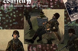 Accurate_Waffen_SS_Skin