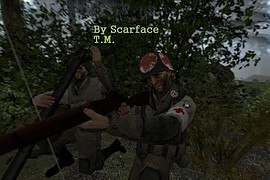 101st_Airborne_div._medic_by_Scarface_T.M