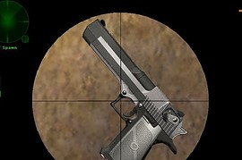Two Tone Desert Eagle