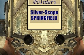 Po1nter_s_Silver-Scope_Springfield