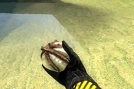 Bug_Bait_ReTextured