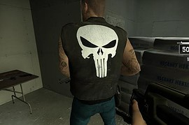 Punisher francis