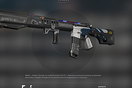 M16A2 Police